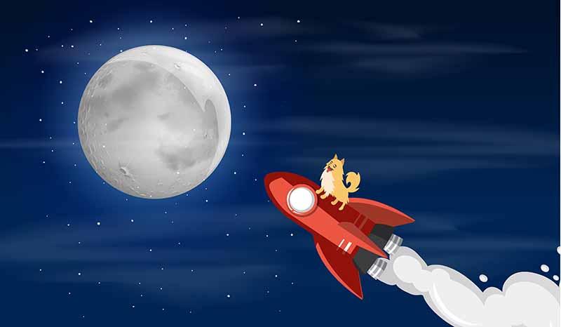 un chien au sommet d'une fusée volant vers la lune